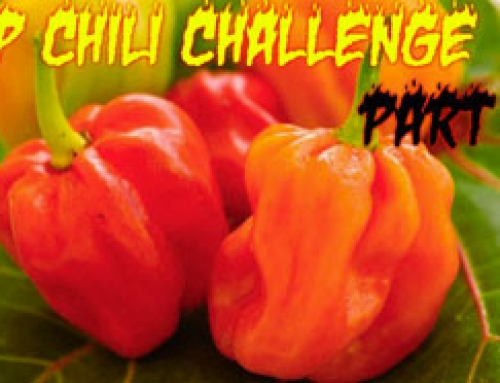 CP Chili Challenge
