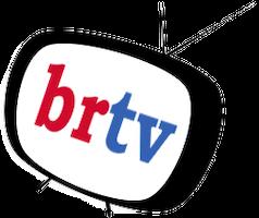 Briar Report